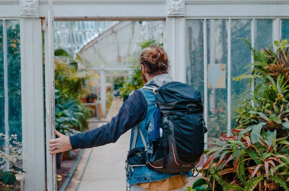 penginapan backpacker